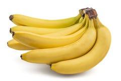 Rå organiska bananer Royaltyfria Bilder