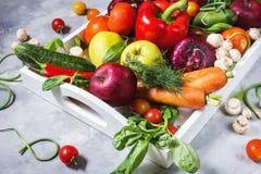 Rå organiska grönsaker med nya ingredienser för healthily att laga mat i det vita magasinet på konkret bakgrund royaltyfria bilder