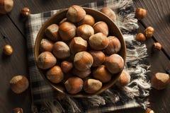 Rå organiska hela hasselnötter Fotografering för Bildbyråer