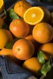 Rå organiska orange apelsiner Arkivbilder