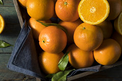 Rå organiska orange apelsiner Arkivbild