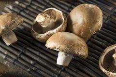 Rå organiska Portobello champinjoner Arkivfoto