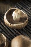 Rå organiska Portobello champinjoner Arkivfoton