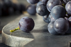 Rå organiska purpurfärgade harmonidruvor Arkivbild