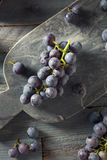 Rå organiska purpurfärgade harmonidruvor Arkivfoton