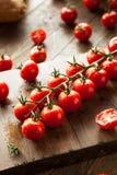 Rå organiska röda Cherry Tomatoes arkivfoto