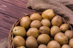 Rå organiska unga potatisar Arkivfoton