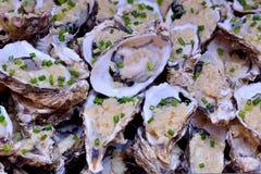 Rå ostron för rostat bröd Royaltyfri Foto