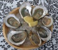 Rå ostron och en littleneckmussla med citronen Arkivfoto