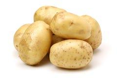 rå potatis royaltyfria foton