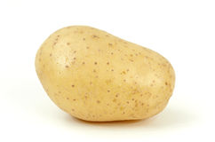 Rå potatis royaltyfri bild
