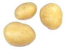 rå potatis royaltyfri fotografi