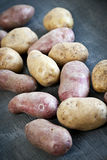 Rå potatisar Royaltyfri Foto