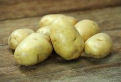 rå potatisar Fotografering för Bildbyråer