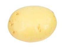 rå potatisar single Fotografering för Bildbyråer