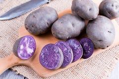 Rå purpurfärgad potatis royaltyfria foton