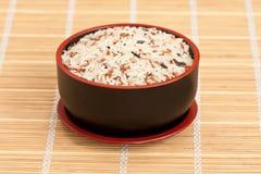rå rice för bunke Royaltyfri Foto