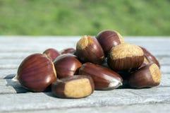 Rå söta kastanjer spridde på träsmakliga och sunda brunaktiga muttrar för tabell, Royaltyfri Bild
