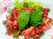 Rå sallad för kryddigt nötkött Arkivbilder
