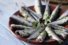 Rå sardiner som är klara att lagas mat Arkivfoton