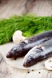 Rå seabassfisk på träbrädet Arkivfoton