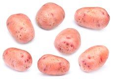 rå set för potatis arkivbilder