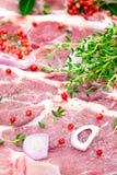 rå smaktillsats för meatpork royaltyfri bild