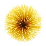 Rå spagetti Arkivfoto