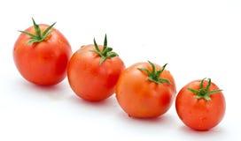 Rå tomater royaltyfri foto