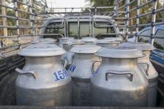 Rå transporter mjölkar i Thailand Arkivfoto