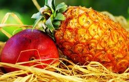 Rå tropiska frukter, Fotografering för Bildbyråer