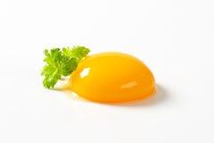rå yolk för ägg royaltyfri fotografi
