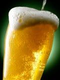 Råna av öl Arkivbild