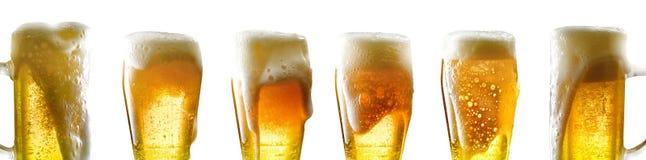 Råna av öl Arkivfoto