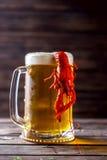 Råna av öl och kokta languster på en trätabell Royaltyfri Bild
