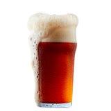 Råna av frostigt mörker - rött öl med skum arkivbild