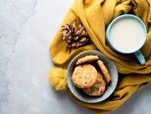 Råna av te med mjölkar och kakor i mjuk halsduk royaltyfri fotografi