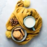 Råna av te med mjölkar och kakor Vintern kopplar av fyrkanten royaltyfria foton