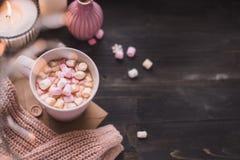 Råna av varm kakao eller varm choklad med marshmallowen och tänder bo fotografering för bildbyråer