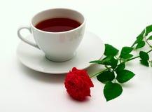 råna rose scharlakansrött Royaltyfri Fotografi