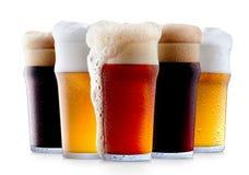 Råna samlingen av frostigt öl med skum arkivbilder