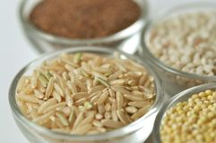 Råriers - Gluten-fritt korn på vit bakgrund royaltyfria bilder