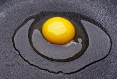 rått ägg Fotografering för Bildbyråer
