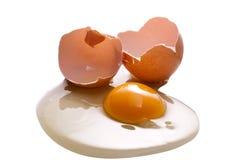 rått ägg Arkivfoton