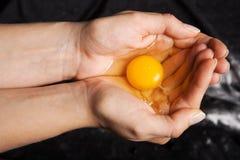 Rått ägg i händer som rymmer säkert arkivfoto