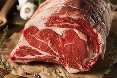 Rått gräs Fed Prime Rib Meat royaltyfri foto