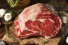 Rått gräs Fed Prime Rib Meat fotografering för bildbyråer