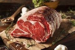 Rått gräs Fed Prime Rib Meat arkivbild