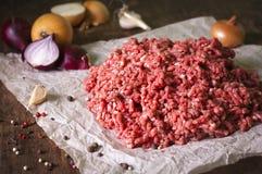 Rått jordkött med löken, vitlök, peppar Fotografering för Bildbyråer