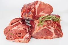 Rått kött med örter och kryddor Fotografering för Bildbyråer